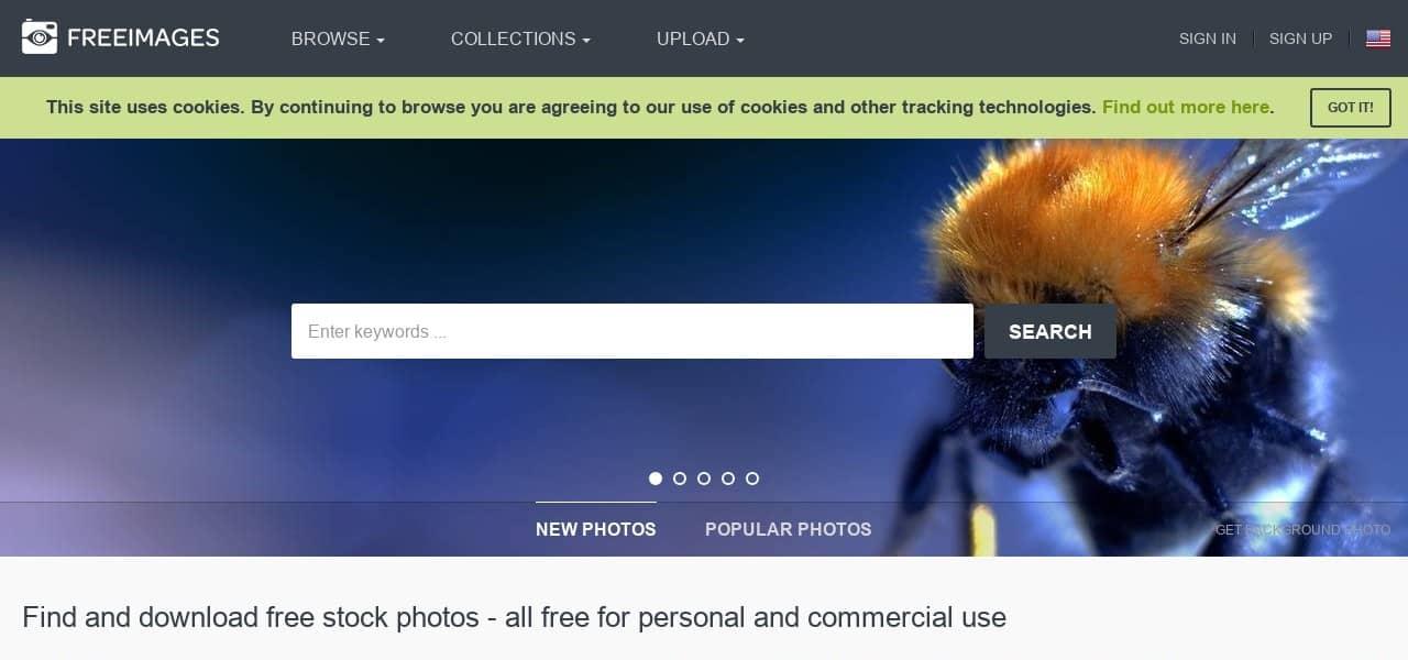 darmowe zdjęcia nastronę www ibloga