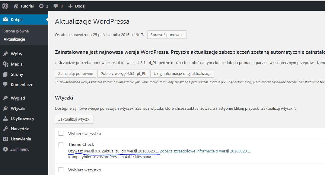 wordpress-blog-witryna-testowa-reinstalacja-wtyczki-wordpress-aktualizacja