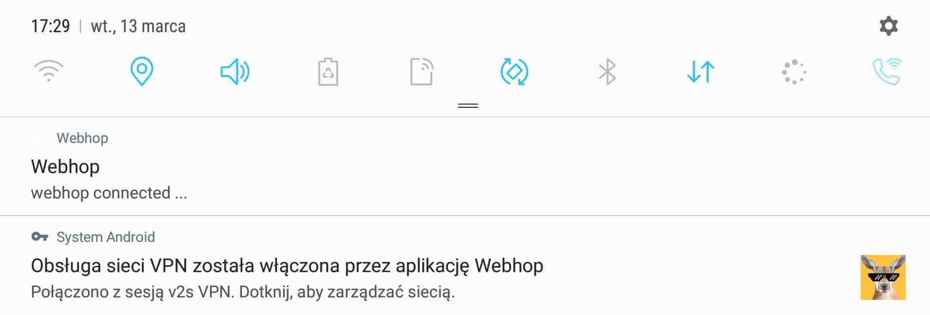 webhop vpn
