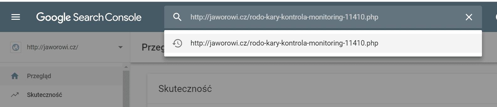 konsola google zaindeksuj stronę