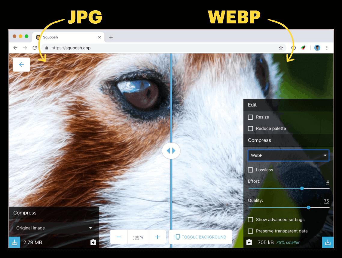Wordpress webp